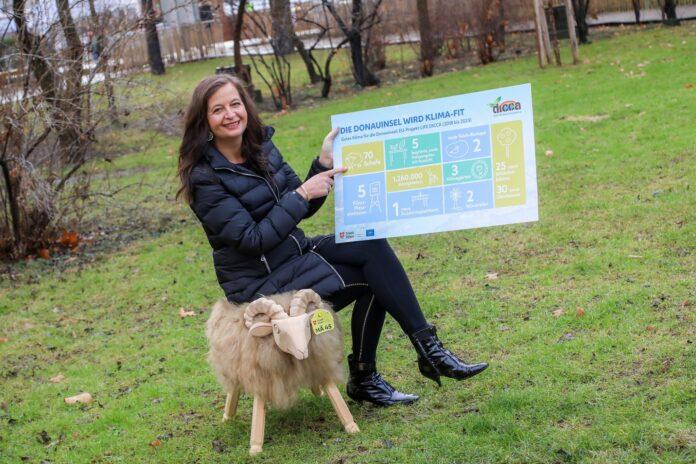 Sima präsentiert Pläne für die klimafitte Donauinsel 2021. Bild: PID/Fürthner.