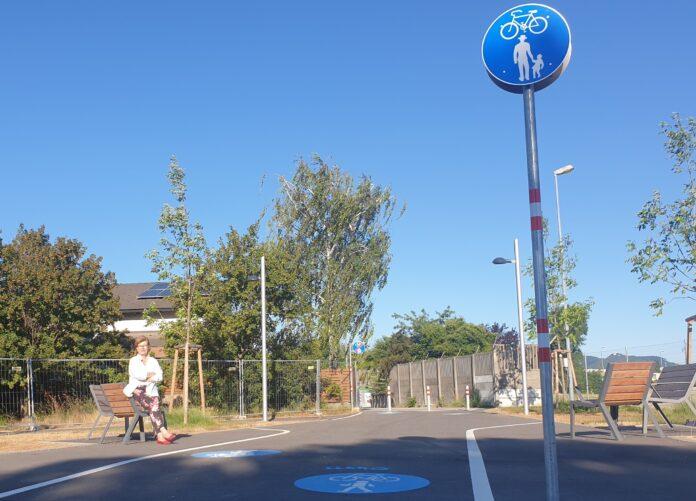 In nur 15 Minuten zu Fuß von der S-Bahn-Station Siemensstraße bis zur Leopoldauer Straße . Ilse Fitzbauer, Gemeinderätin. Foto: Privat.