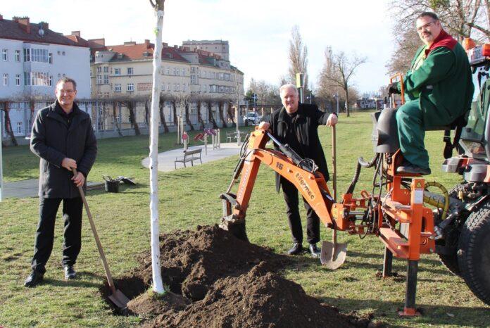Bezirksvorsteher Georg Papai und Gemeinderat Gerhard Spitzer (beide SPÖ). Bild: BV21.