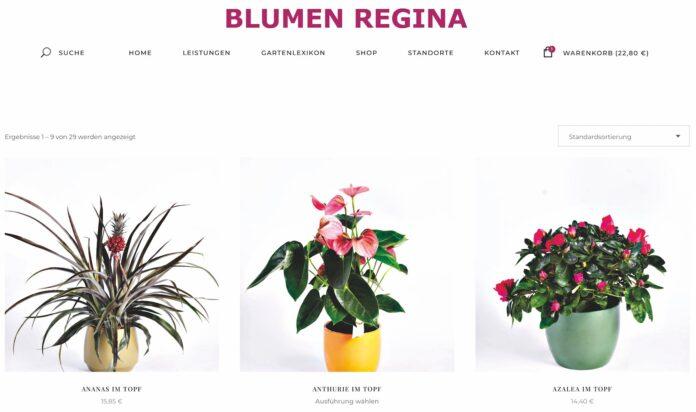 Webshop Blumen Regina. Bild: DFZ.