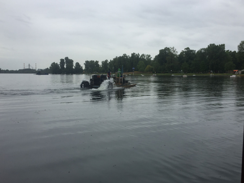Alte Donau: Mähboote im Einsatz gegen Markrophyten. Bild: DFZ.