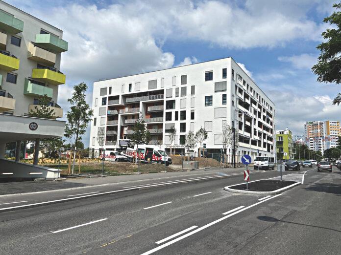 Koloniestraße mitNeubauten. Bild: DFZ.