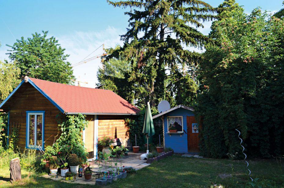 Kleingarten in  Donaufeld.. Bild:Privat.