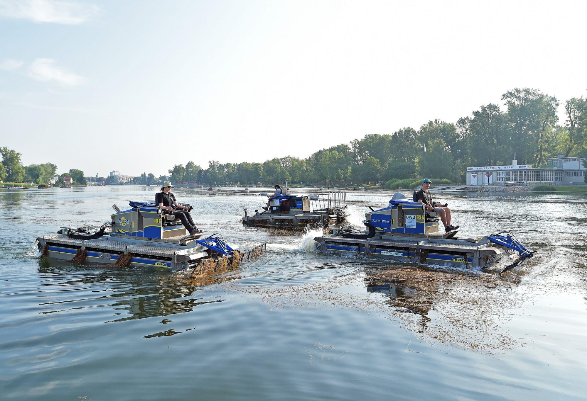 """17 Mähboote jeden Tag im Einsatz gegen Wasserpflanzen in der Alten Donau. """"Mähboot-Armada"""" im Turbo-Einsatz gegen Wasserpflanzen in der Alten Donau. Bild: WGM/Jobst."""