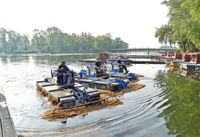 """""""Mähboot-Armada"""" im Turbo-Einsatz gegen Wasserpflanzen in der Alten Donau. Bild: WGM/Jobst."""